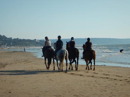 Randonnées à cheval - Tourisme équestre à Rouen