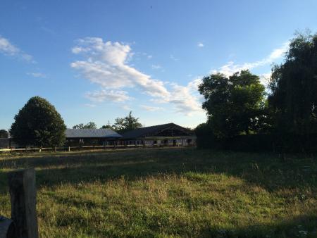 Retraite pour chevaux à Caumont - Centre équestre près de Rouen