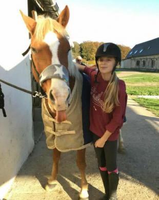 Votre équidé, un compagnon idéal pour vos cours d'équitation