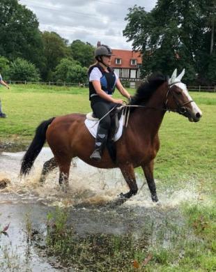 Balade à cheval près de Rouen