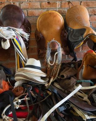 Matériels et équipements pour chevaux