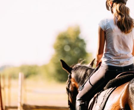 Cours d'équitation galops 1 à 7