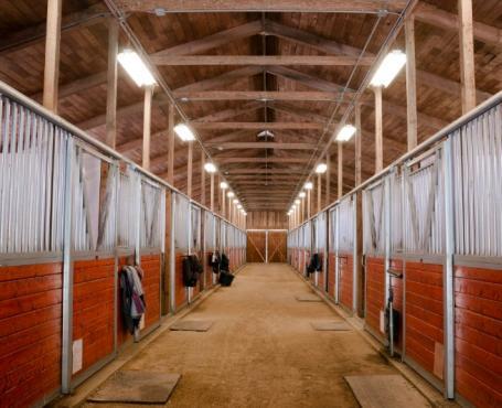 Box à chevaux à Caumont  - Centre équestre près de Rouen